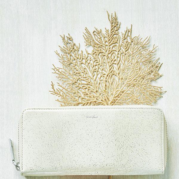 ミニ財布ブームでも長財布が根強く人気な理由とは?