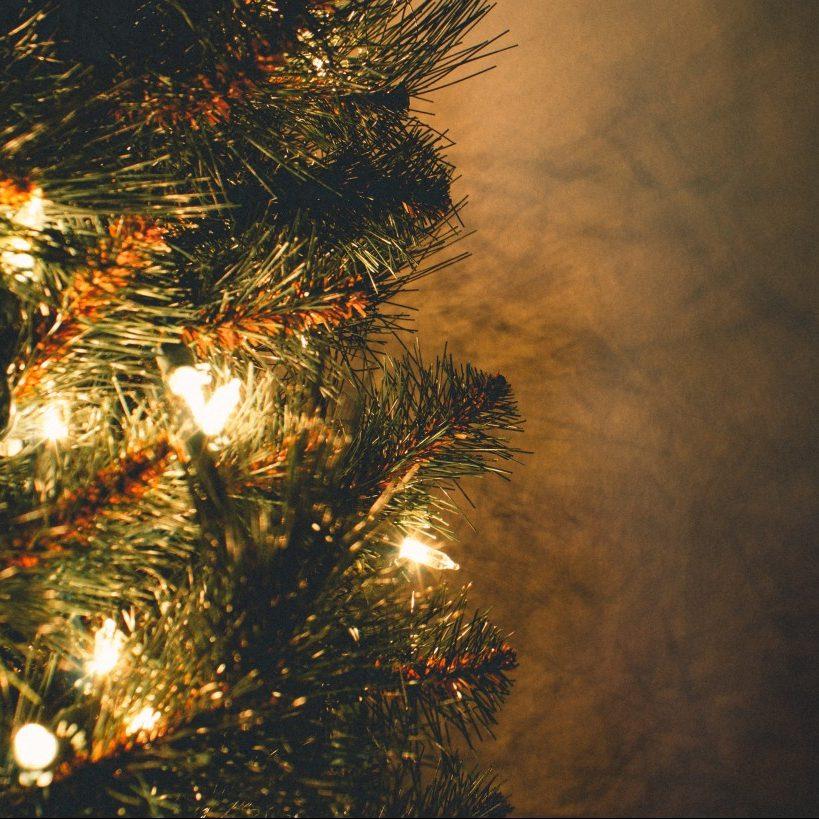 クリスマスギフト特集♪
